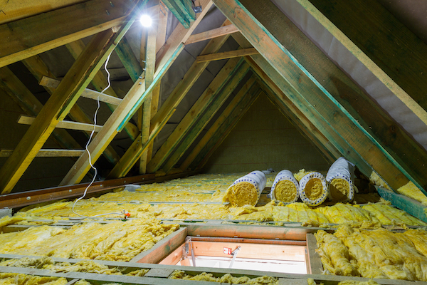 Attic Clean Out & Insulation Replacement Service